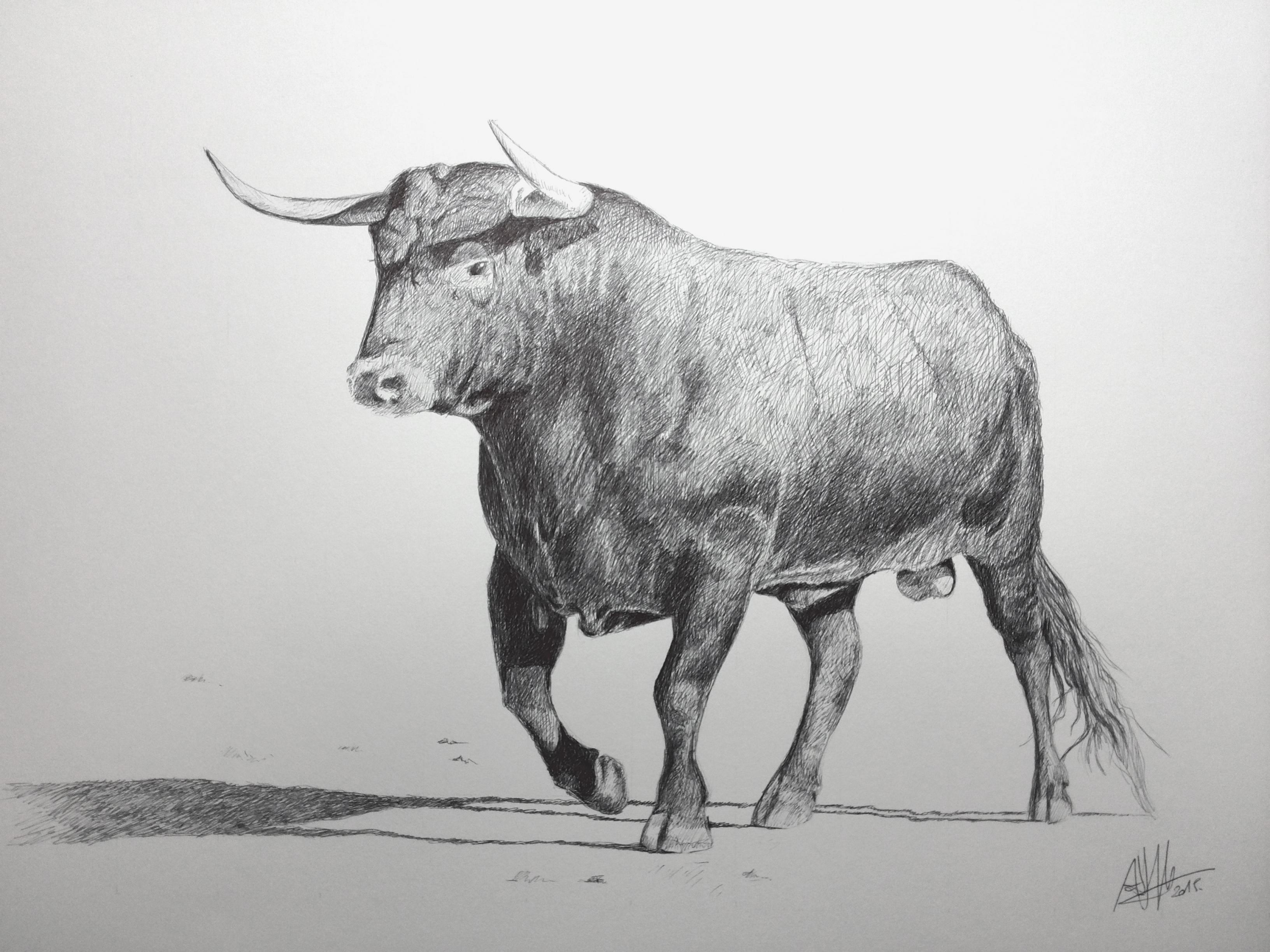 Toro Tinta Sobre Papel Canson 46325 Cms Retratos Y Dibujos
